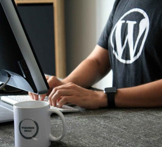 wordpress designer bristol